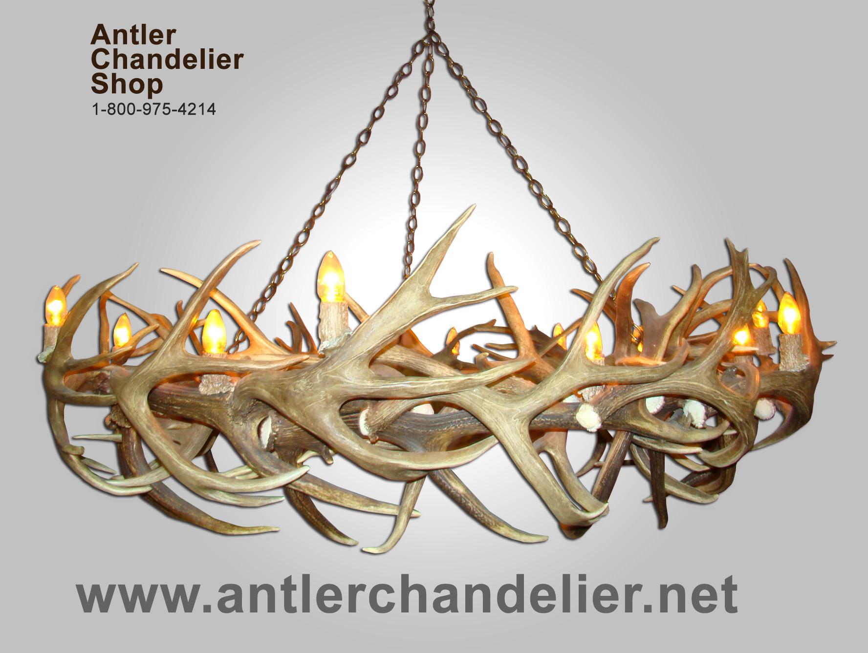 REAL ANTLER ROUND MULE DEER ELK ROUND CHANDELIER 14