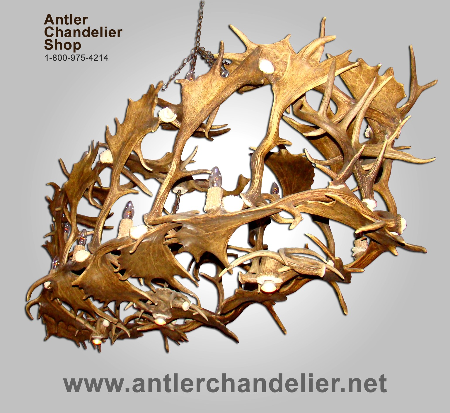 Real Antler Custom Fallow Whitetail Deer Chandelier CFWT – Real Deer Antler Chandelier