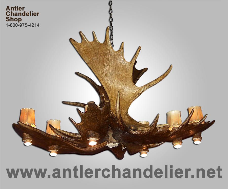 Real antler moose pool table deer chandelier 12 lights moosepl 8 httpsantlerchandelierebayimageslarge20realmoosepl aloadofball Image collections